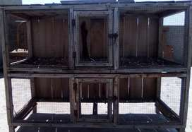 Parrots cage  for wood