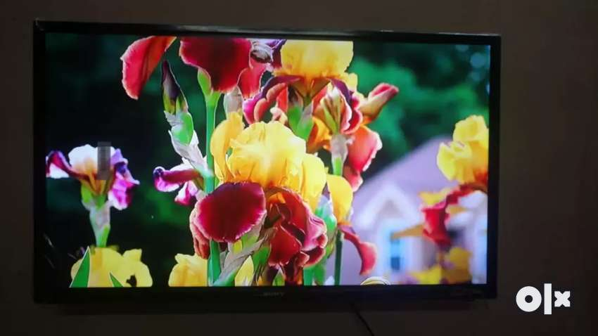 New Sony 32 inch full HD normal LED TV 0