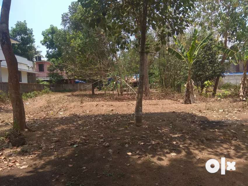 5/10;cents land is available in and around irinjalakuda 0