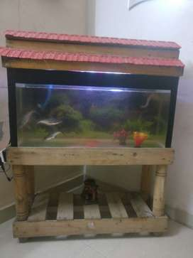 fish tank for sale with all accessories/