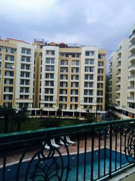 1bhk flat for rent@pacific hills