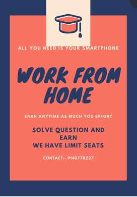 Work from home by solving questions