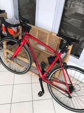 Roadbike polygon strattoss S2