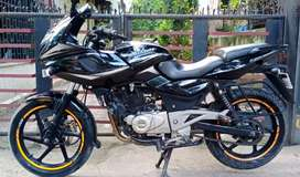 Mint condition pulsar 220 f ( black)