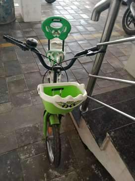 BSA kinds cycle