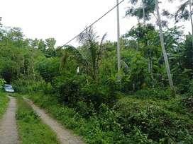 Tanah Pekarangan View Kota Yogya & Bukit Menoreh