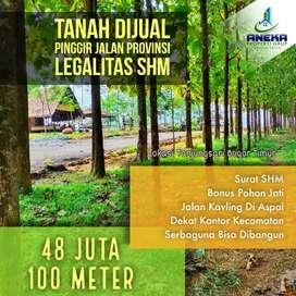 Tanah 140m² Kavling Bonus Kebun Jati Dijual Pinggir Jalan Provinsi