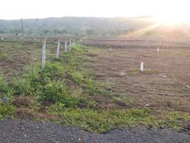 plot sale near by nareshwar temple