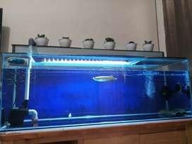 aquarium 120 cm fullset murah