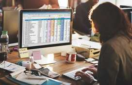 Accountain Tally and ms Excel 1 year Exp only for Commerce girl Apply