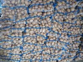 Export Quality Potato (santey) Neat & Clean Wash As Per Export Method