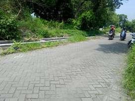 Tanah Luas Cocok Untuk Gudang Driyorejo