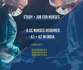 STUDY & JOB FOR NURSES