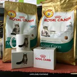 All types of Pet Foods available for Cats