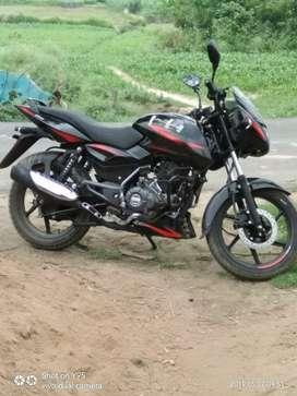 Bajaj pulsar new showroom condition bike