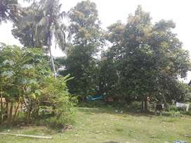 20 cent house plot in Mathumoola, Vazhappally, Changanasserry