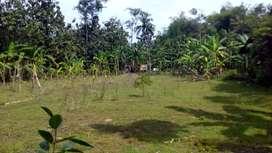 Tanah pekarangan di jual