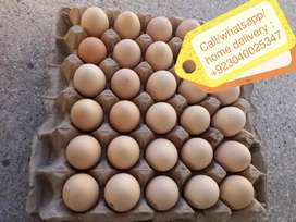 Desi Eggs wholesale rate