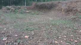 1 Acre for sale - Pig, Poultry farm( കോഴി,പന്നി ഫാം)