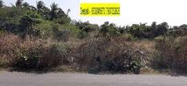 Palakad -58 cent near to Ahalia Hospital kanjikodu only 3 km from BEML