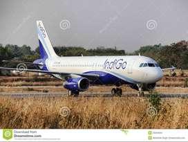 Urgent hiring for indigo airlines -Indigo Airlines Job  Dear Candidate