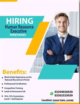 Human Resource executive internees