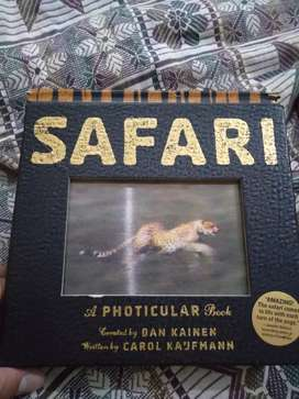 Safari Photicular Book by Workman