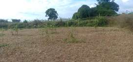 10 Acre Agriculture Farm Land near Devarabetta road