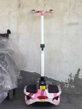 Electric Scooter with Handle Control