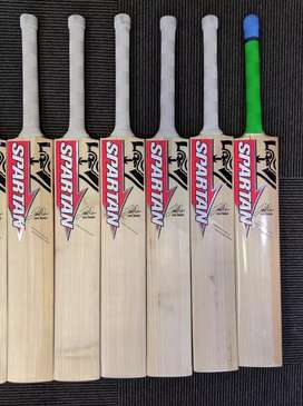 Spartan Sikandar David Warner cricket bat