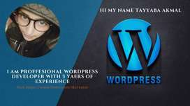 I will build, design responsive wordpress website