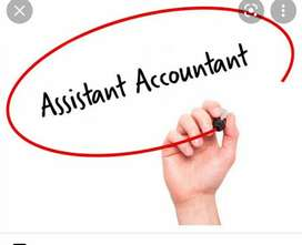 Accountant vacancies in Ltd companies fresher Experience can apply