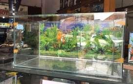 Baru aquarium 80x40x40 background