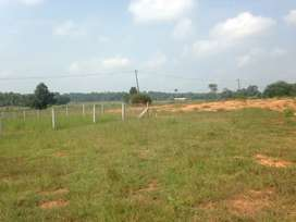 Land for sale near CFD Vocational Higher Secondary School