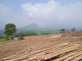 Tanah Kavling Nuansa View Indah Full Fasilitas Free Pohon Durian Bawor