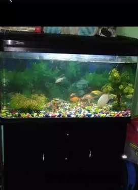 Fish aquarium fiber tank 3 feets