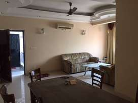 SECTOR-29 FULL FURNISHED OR RENT IN NOIDA...
