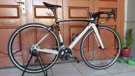 Roadbike Polygon Strattos S7 Rim Brake 2021
