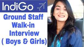 Direct Hiring For Ground Staff ,cabin crew,Airticketing Indigo airline