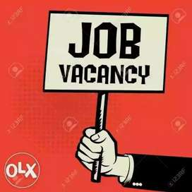 2019 female and male job vacancy