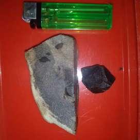 batu fosil bellek Opal.