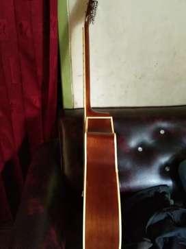 Gitar Arcoustik jumbo