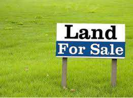 Land for colony plotting and investment is available.read ad & contact