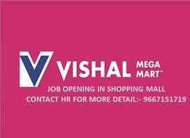 WE SRE HIRING FOR VISHAL MEGA MART
