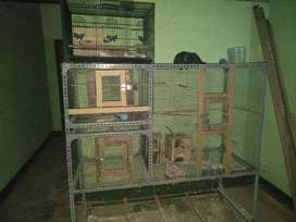 Kandang bekas burung lovbird koloni