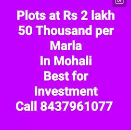 Plots in Gated Society at Rs 2 lakh 50 thousand per Marla in Mohali