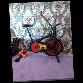 Sepade statis platinum bike tl-8207 ex-221 semarang