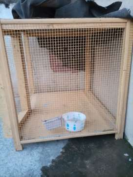 normal cage