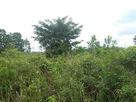 Di jual Tanah cocok untuk investasi