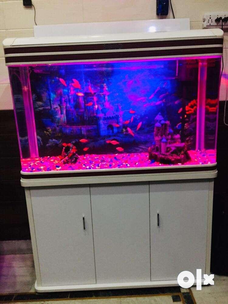 Aquarium For Sale 0